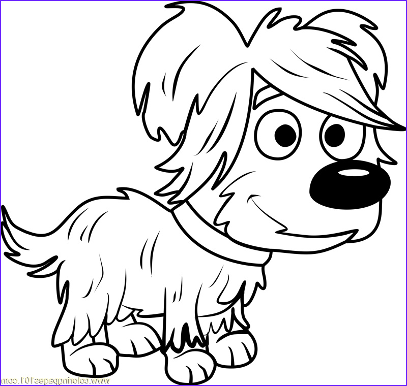 pound puppies hairy coloring page