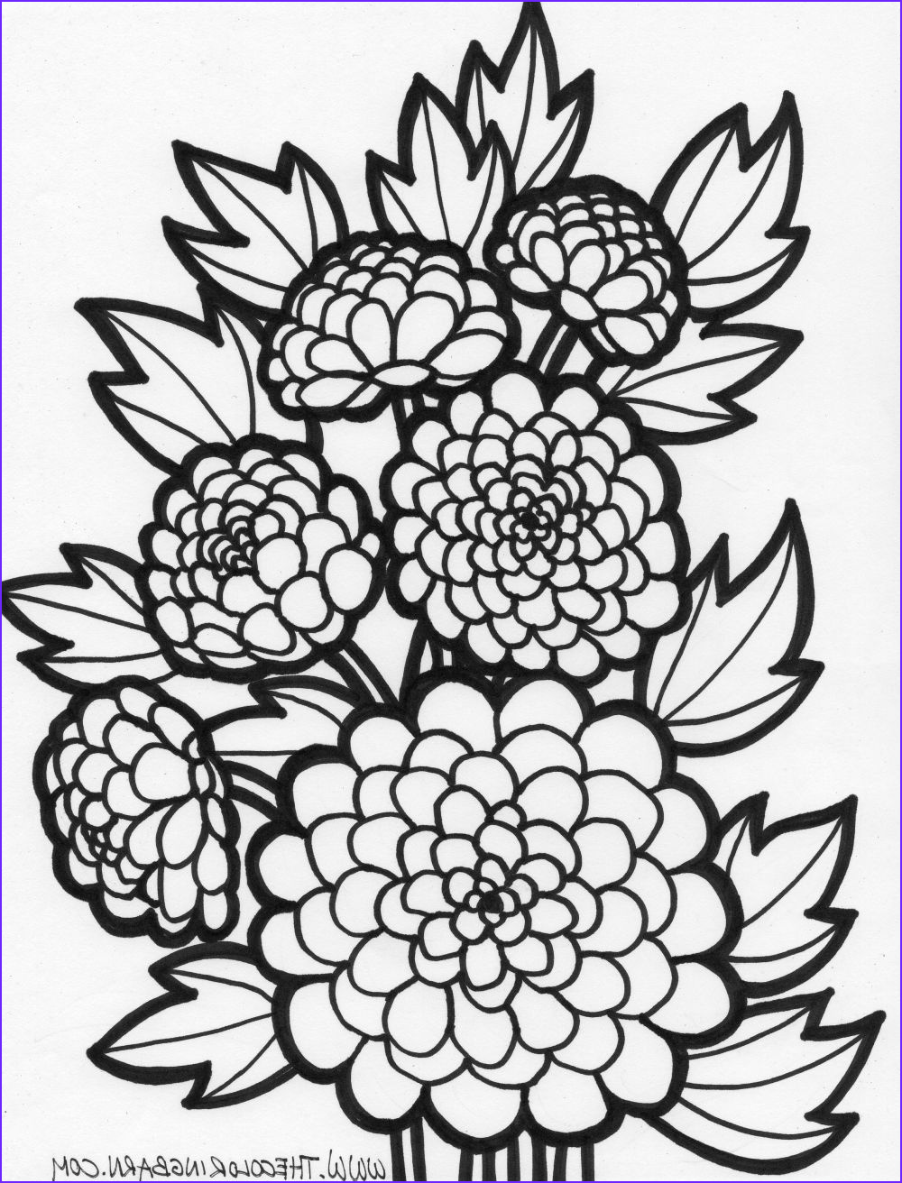 Printable Flower Coloring Page Cool Collection Coloring Pages Of Flowers For Teenagers Difficult