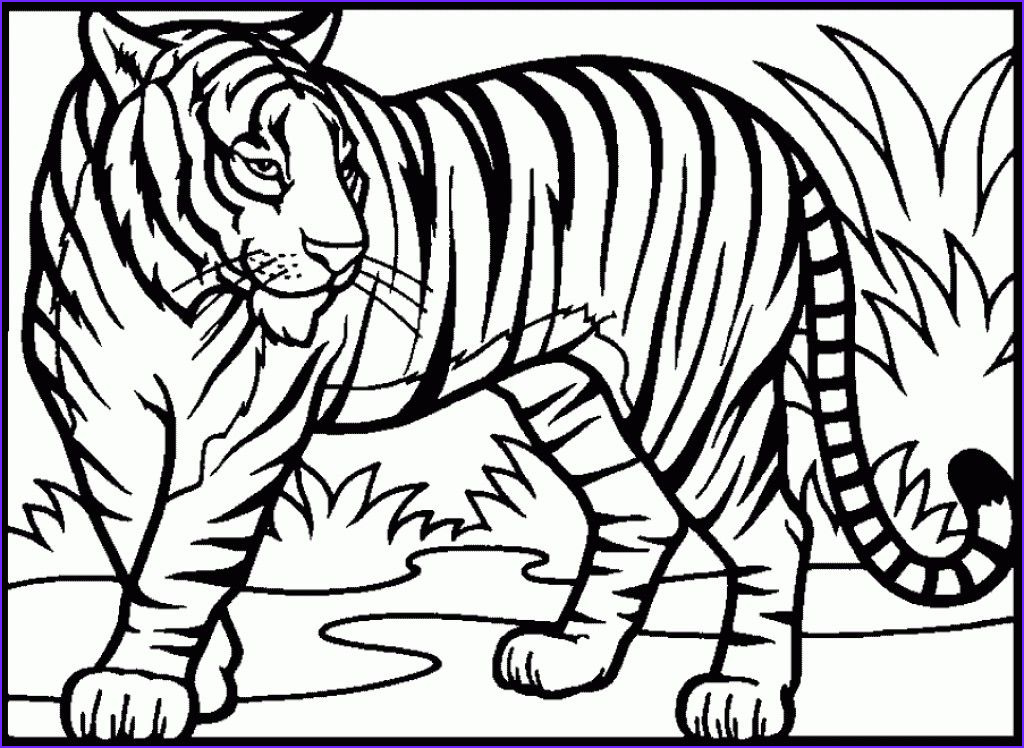 Printable Tiger Coloring Page Cool Stock Realistic Tiger Coloring Pages Free