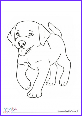 Puppies Coloring Picture New Photos Corgi Colouring Page