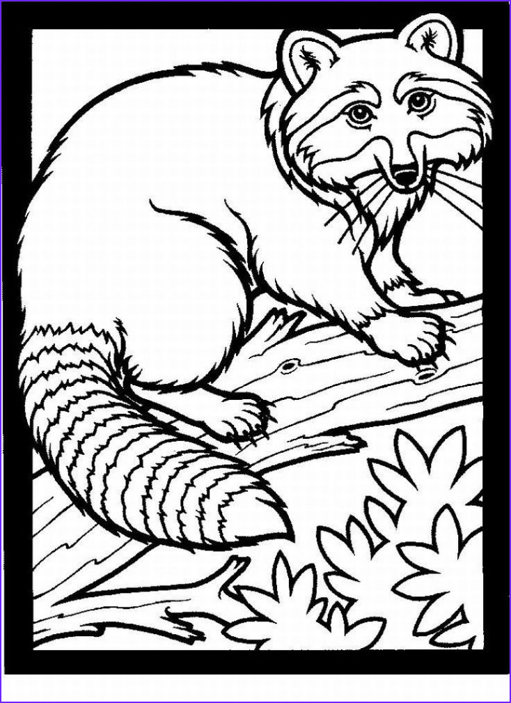 Realistic Animal Coloring Page Best Of Photography March 2011 Child Coloring