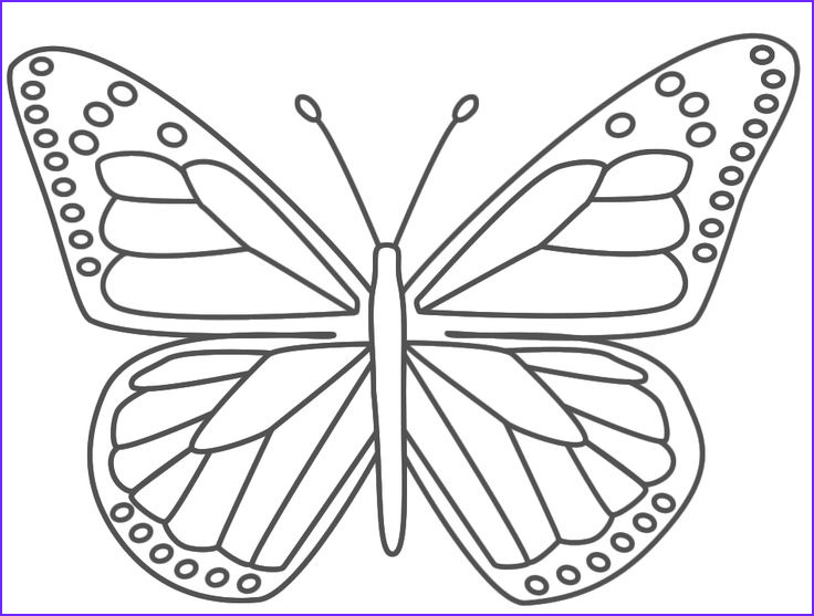 flying pencil butterfly sketch templates