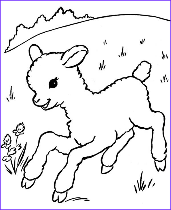 full size page sheep sketch templates