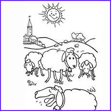 Sheep Coloring Sheet Unique Gallery top 25 Free Printable Sheep Coloring Pages Line