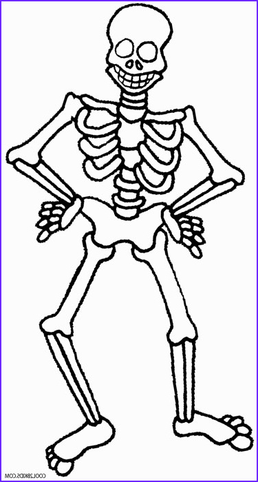 Skeletal Coloring Book Elegant Photos Skeleton Coloring Pages to Print Sketch Coloring Page