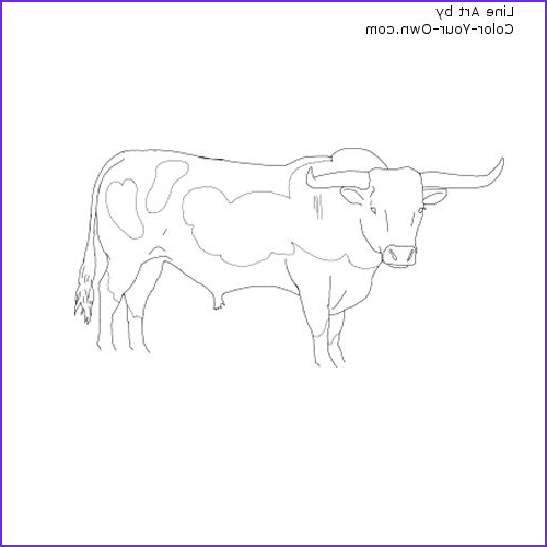 Texas Longhorn Coloring Page Elegant Images Longhorn Cattle Coloring Download Longhorn Cattle