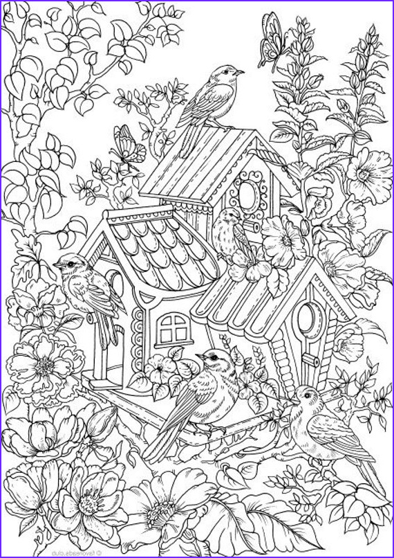 The Adult Coloring Book New Gallery Birdhouse Printable Adult Coloring Page From Favoreads