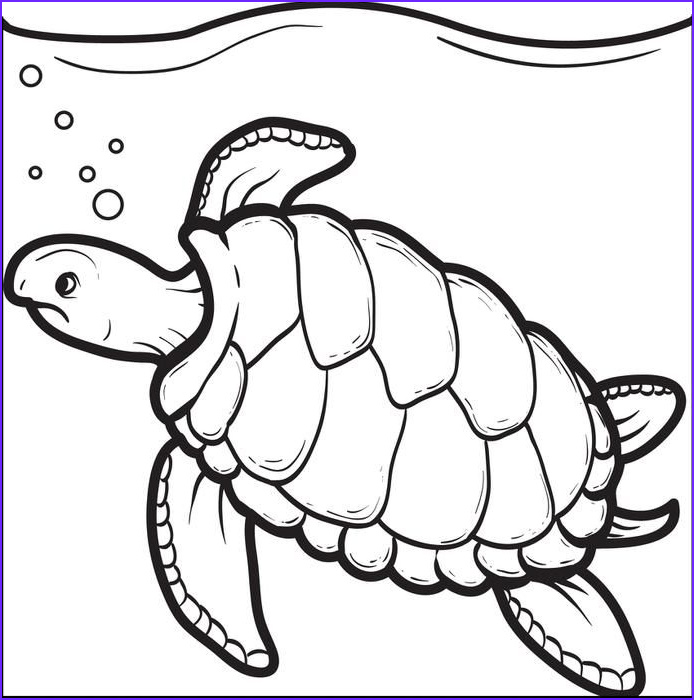 Turtle Coloring Page to Print Elegant Stock Swimming Turtle Coloring Page Heat Press Ideas