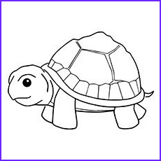 Turtle Coloring Page to Print Inspirational Stock top 20 Free Printable Turtle Coloring Pages Line