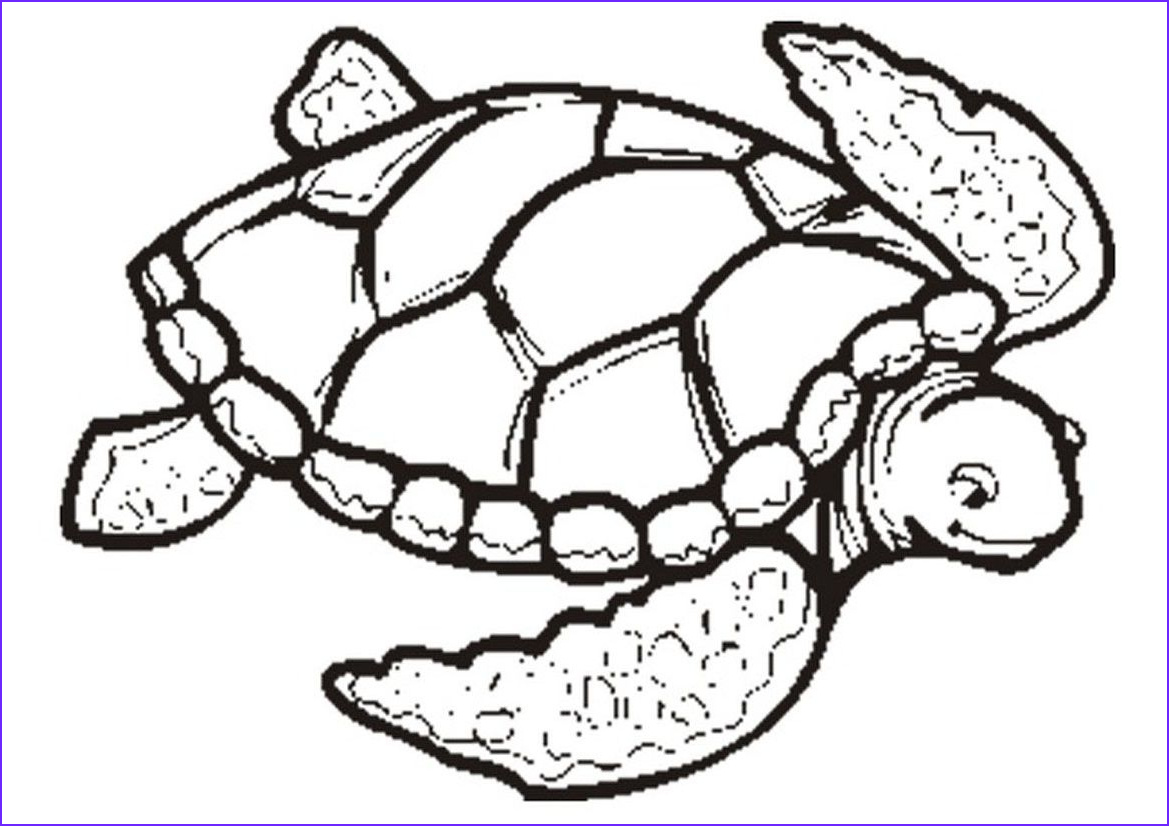 Turtle Coloring Page to Print New Photos Free Printable Turtle Coloring Pages for Kids