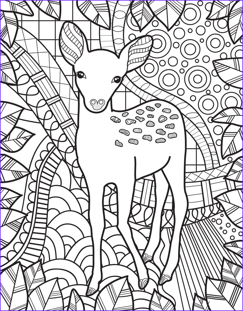 Vet Coloring Page Inspirational Photography Zendoodle Coloring Baby Animals Jeanette Wummel