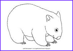 Wombat Coloring Page Elegant Images Wombat Printables Wombat Colouring Page